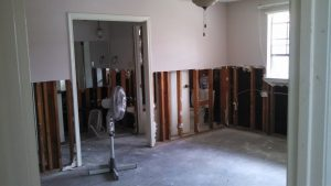 mold-remediation-in-homes-1
